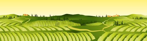 attribution-préferentielle-indivision-exploitation-agricole-héritier-avocat